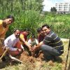 Bangalore Central District Youth plant Saplings in SSSIHMS,Whitefield