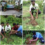 Go-Green Campaign @Majali, Karwar, Uttara Kannada